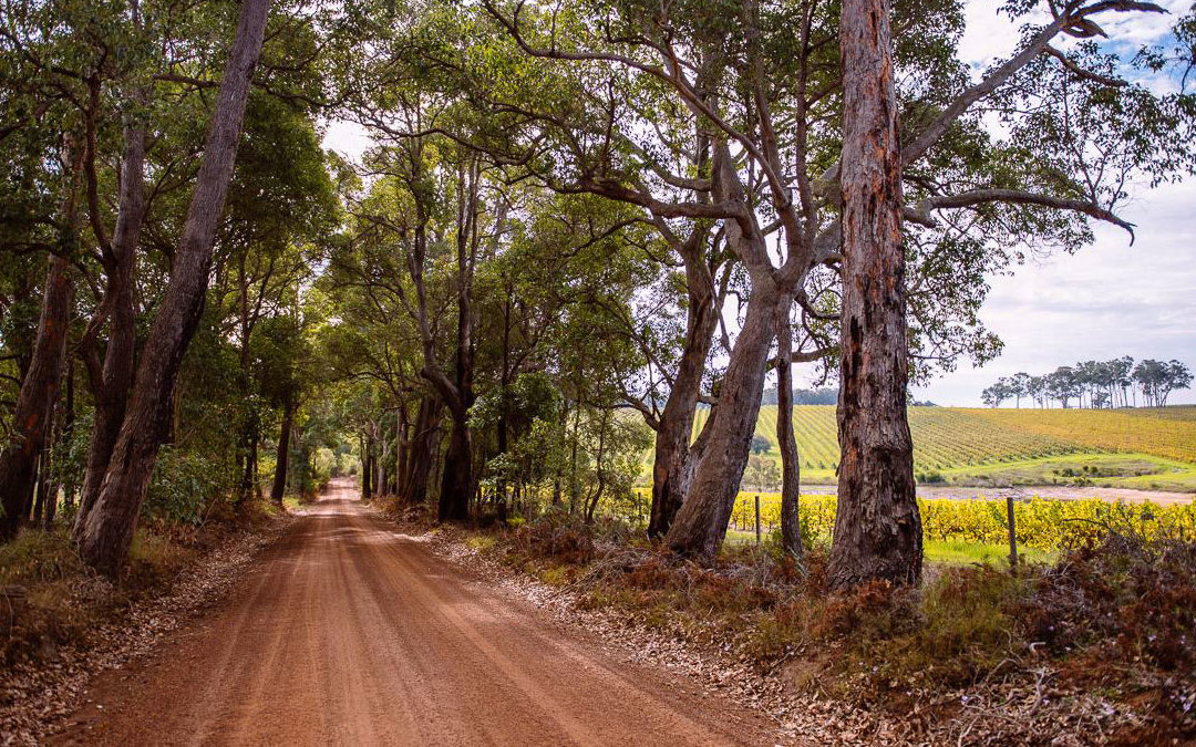 Explore Margaret River Central