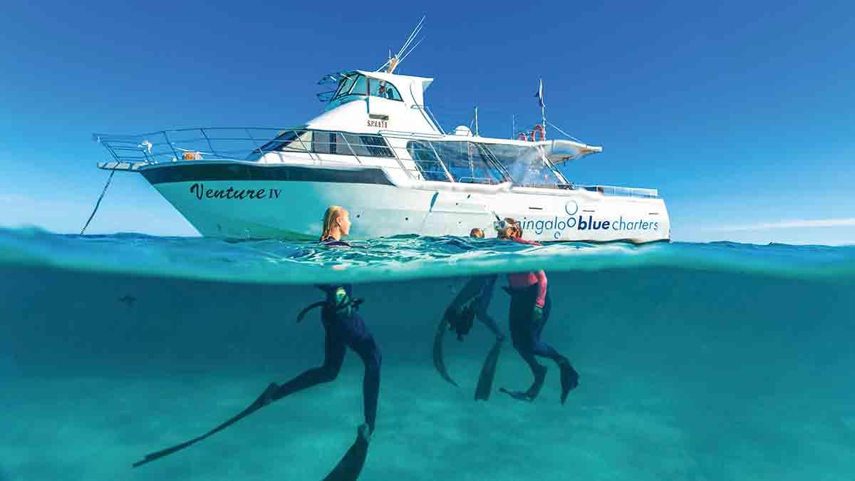 Couple snorkelling near boat