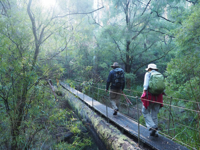 Hiking the Bibbulmun Track