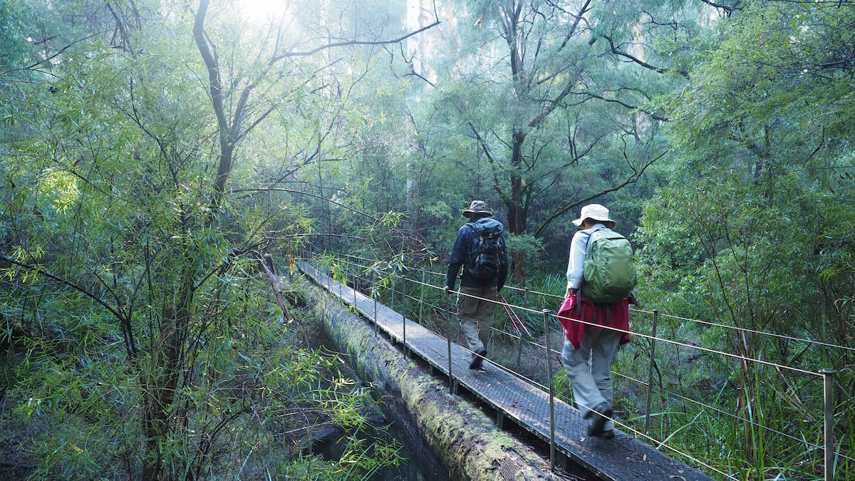 Hiking the Bibbulmun Track | Scoop