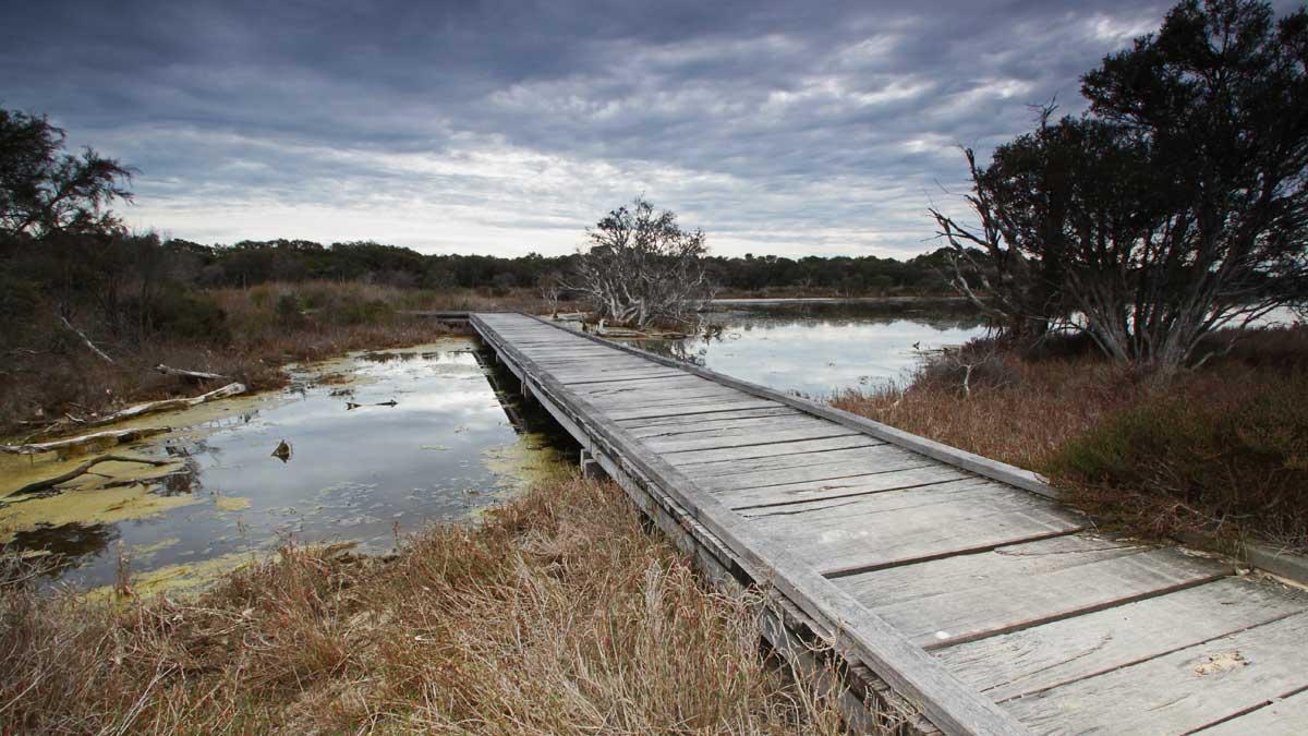a wooden walking bridge crossing the river