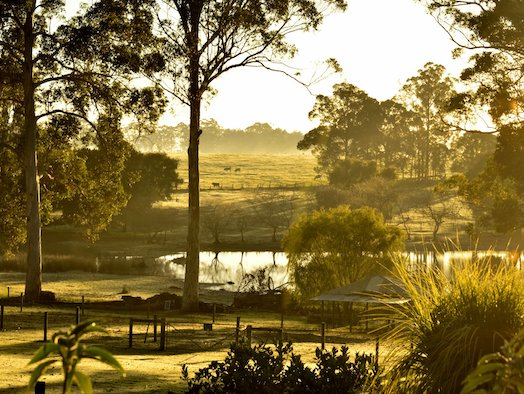 Family-friendly farmstays from Ferguson Valley to Pemberton and Margaret River
