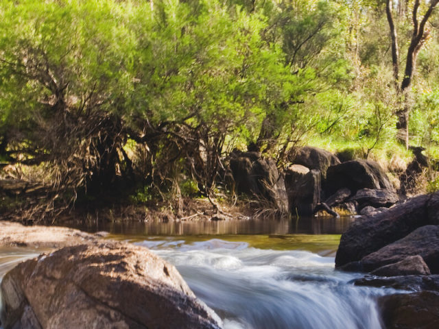 Step back in time in Nannup, home of heritage-listed timber town Donnelly River Village