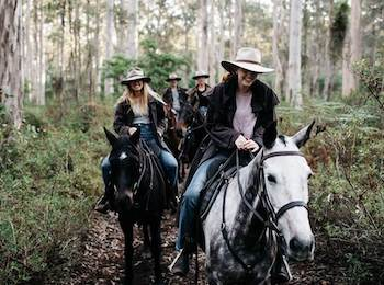a group of people horse back riding through the forest