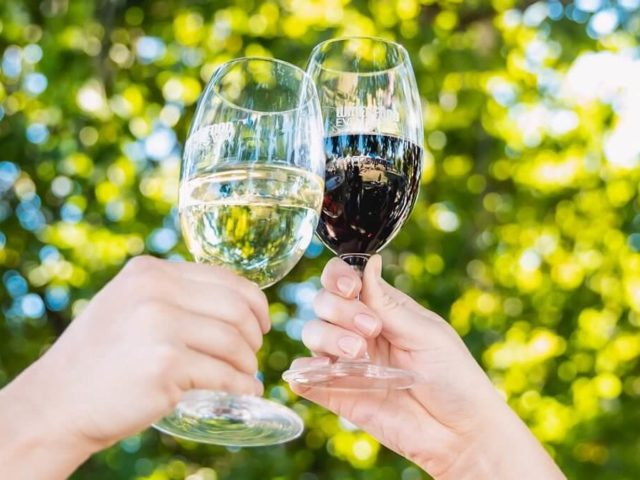Perth's premium wine festival returns in November with over 200 wines to try and buy
