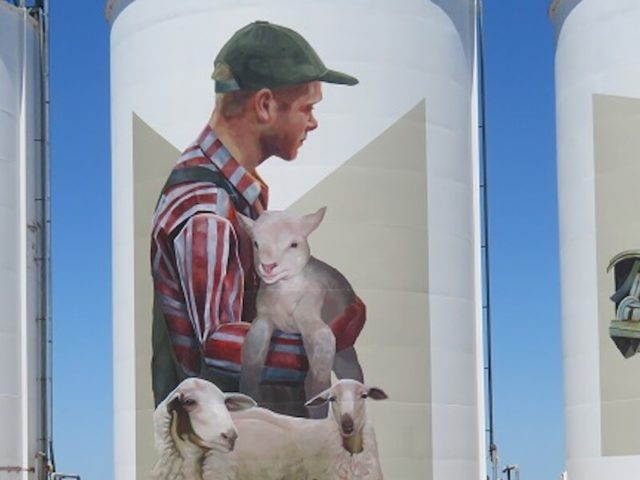 The Silo Trail: where to find WA's giant silo art murals