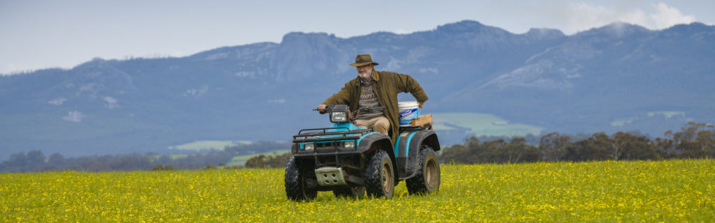 How Jeremy Sims' new film RAMS starring Sam Neill showcases the unique landscapes of Mount Barker