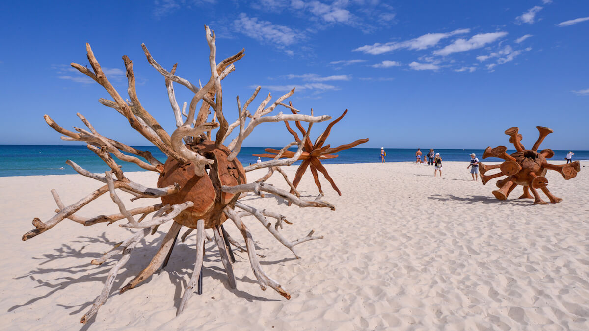 three wooden sculptures in the shape of viruses, made out of branches and other textured wood sit on the beach of white sand, with some people and the ocean and blue sky in the distance from Sculpture by the Sea 2020