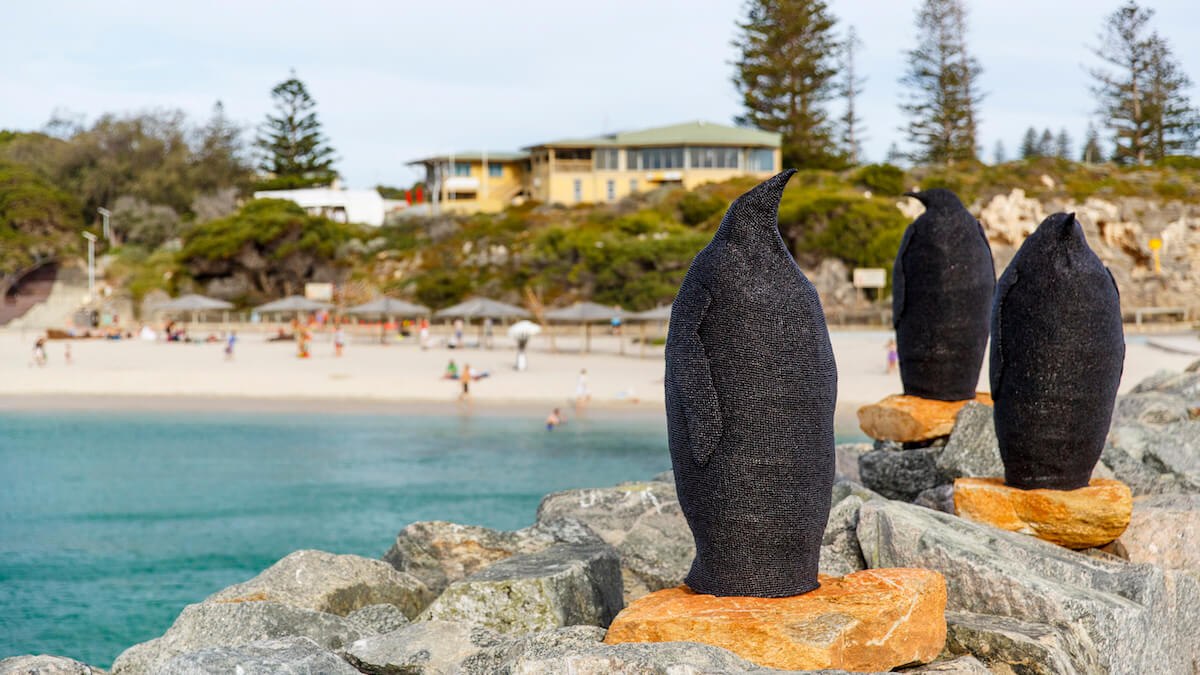 Three textured, monochrome black sculptures in the shape of emperor penguins sit on orange coloured rocks upon a beach groyne. The blue ocean can be seen in the distance, as well as white sand and beachgoers, with pine trees and a building in the background from Sculpture by the Sea 2020