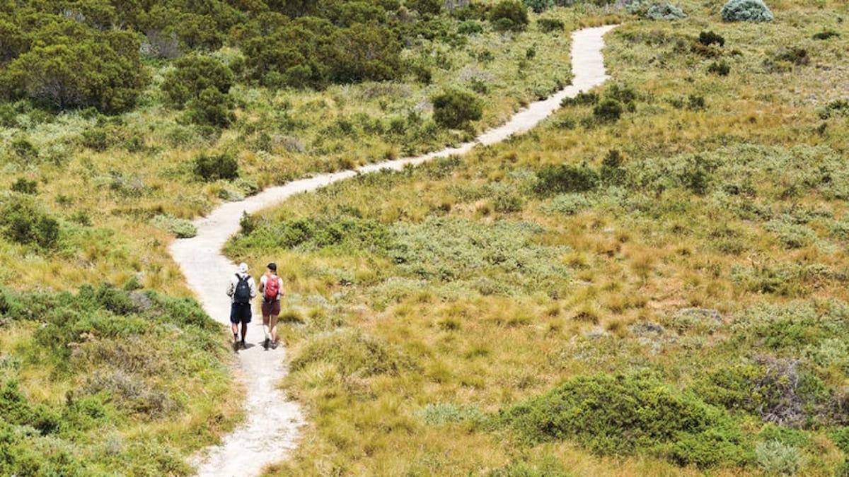 people walking on Rottnest