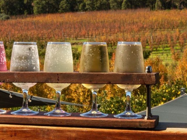 Enjoy wine, cider, art & gourmet produce at the Bickley Harvest Festival