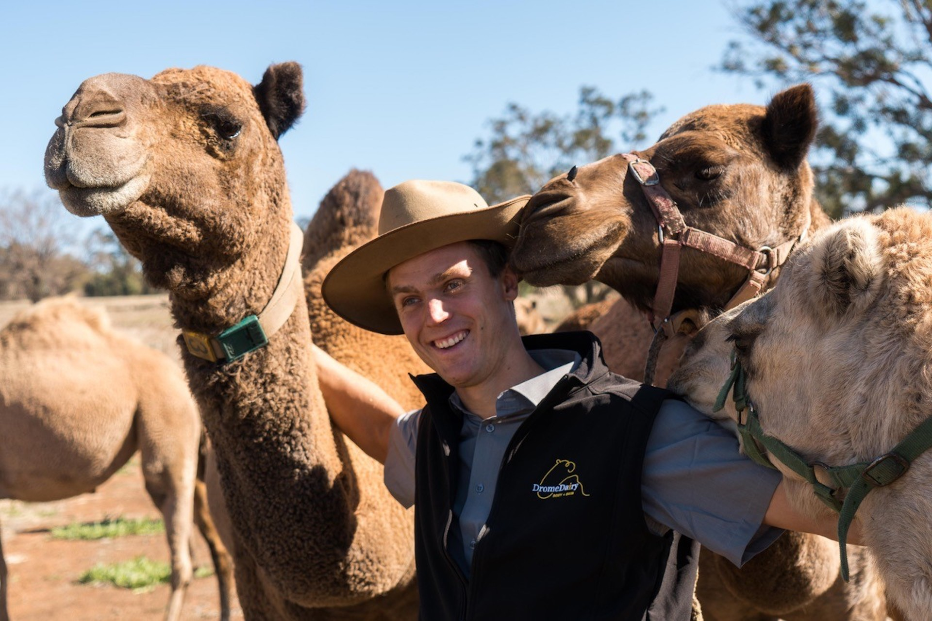 Max Bergmann pictured with camels