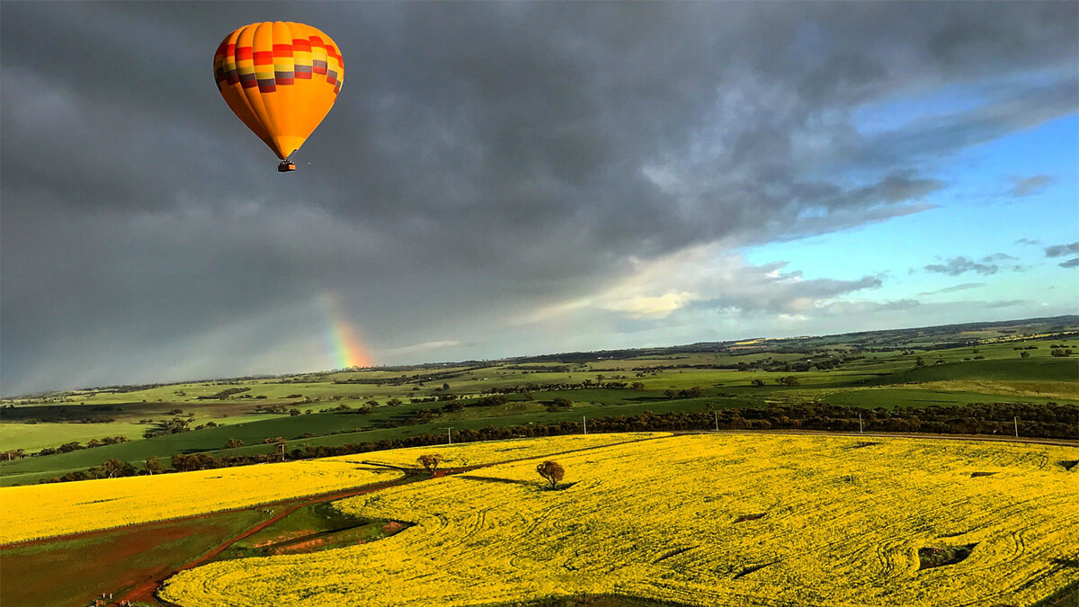 Hot air balloons in Northam